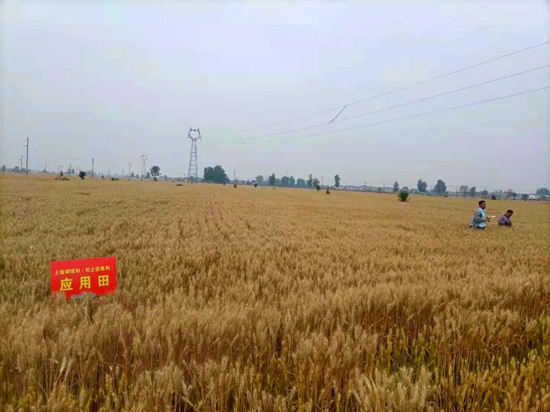 河南省土壤调理与修复工程技术研究中心