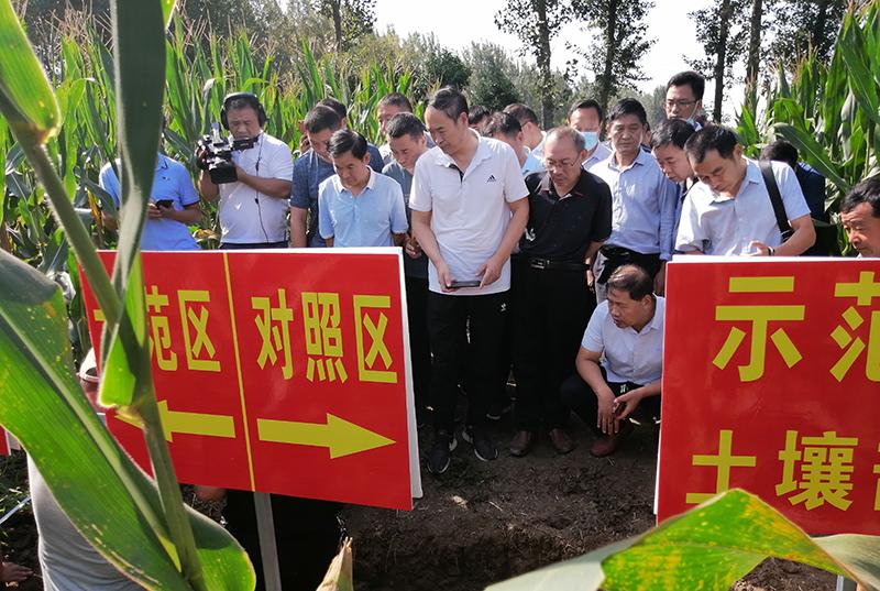 南阳市:土壤改良放异彩 万博manbetx官网电脑促根谱新篇 ----南阳市高标准农田土壤改良耕地质