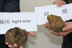 Agri-star万博manbetx官网电脑促根剂是如何修复土壤的