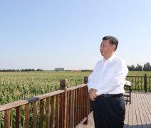 <b><font color='#006600'>习近平总书记考察吉林时就土壤保护及有关农业农村方面的讲话</font></b>