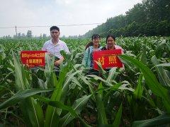 <b>河南省人民政府办公厅 关于加强高标准农田建设打造全国重要粮食生产核心区</b>